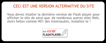 Installer le flash player (site officiel)